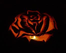 Rose Jack 0 Lantern